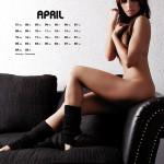Kalender_2013_print_x3-5